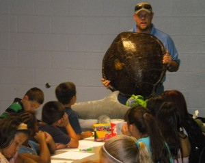 Using marine artifacts like a sea turtle shell to teach marine conservation!