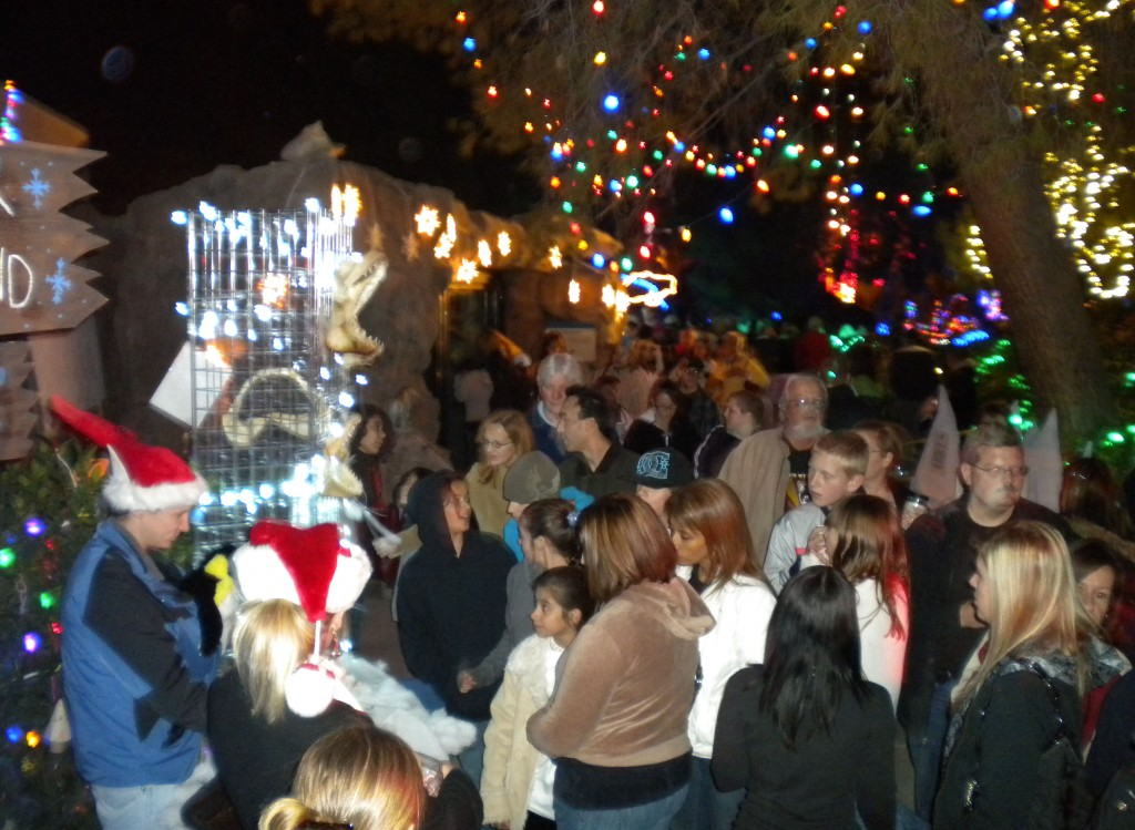 Zoo Lights 2009!